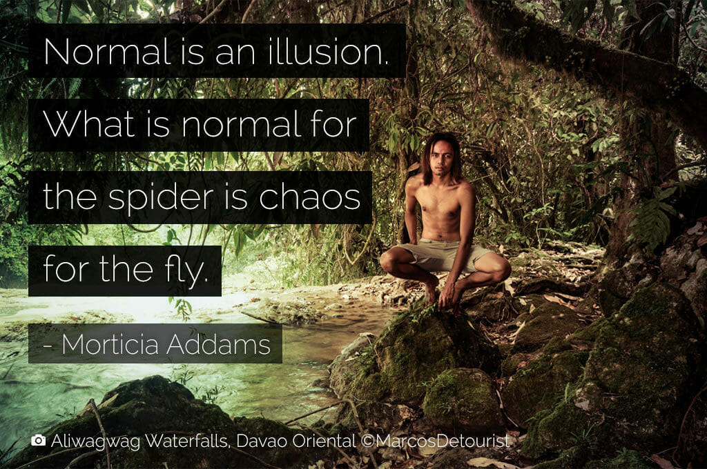 normal-is-an-illusion