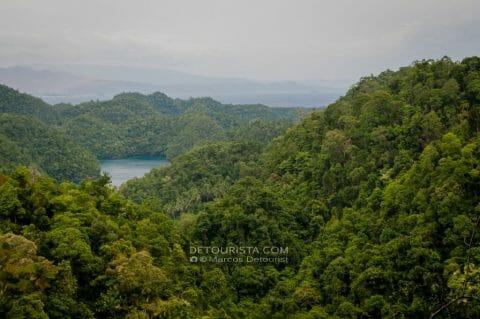 Bucas Grande's Non-Sting Jellyfish and Trek to Sohoton Lagoons
