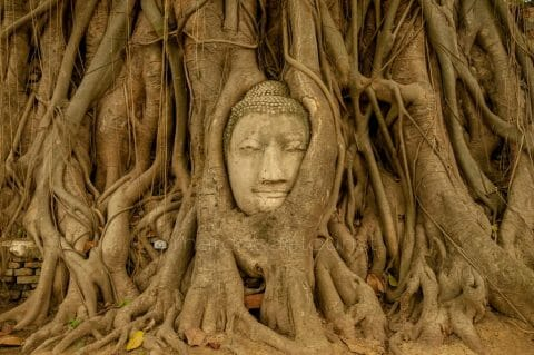 Six Days at the Ruined Temples of Ancient Ayutthaya, Thailand