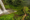 Bolaven Plateau, Champasak, Laos