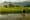 Rice paddies at Champasak, Laos