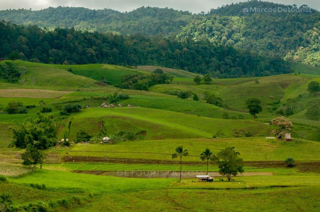 Alamada, North Cotabato, Philippines.