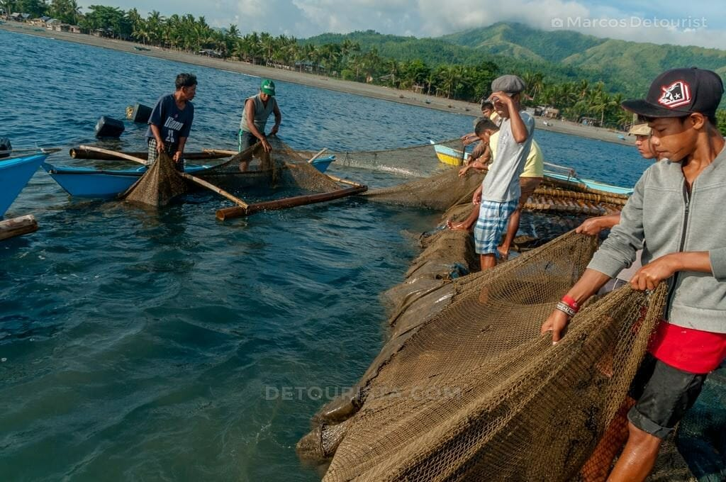 Lambaklad Fishing in Tibiao, Antique.