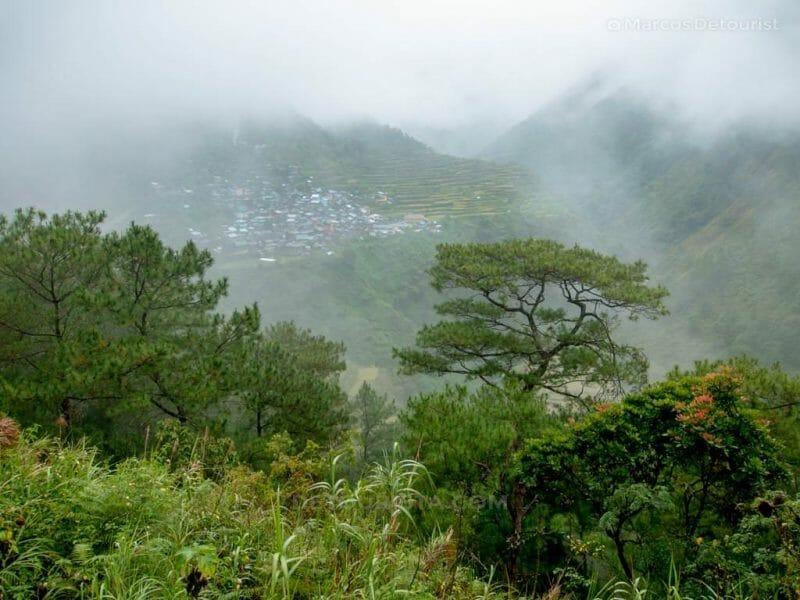 Bayyo Rice Terraces, Bontoc, Mountain Province