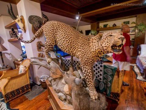 Hunting room at Villa Visaya, Roxas City, Capiz, Philippines
