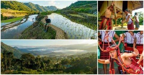 Kiangan Rice Terraces Trek & Kiangan Shrine