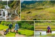 Around Sagada – Town Proper, Lumiang and Sumaguing Cave