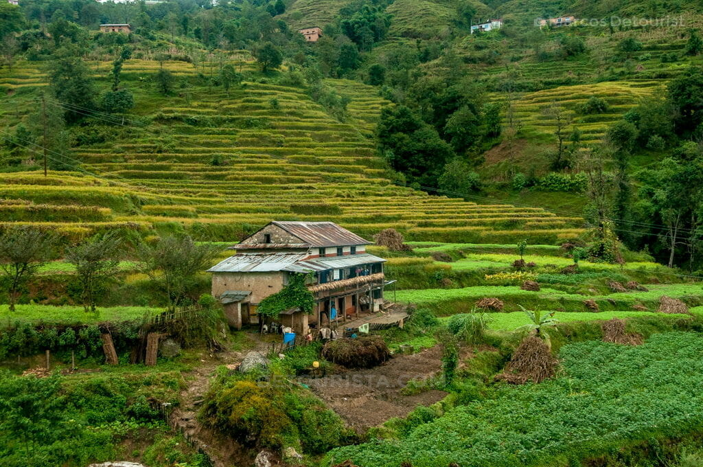 Nagarkot Farm House