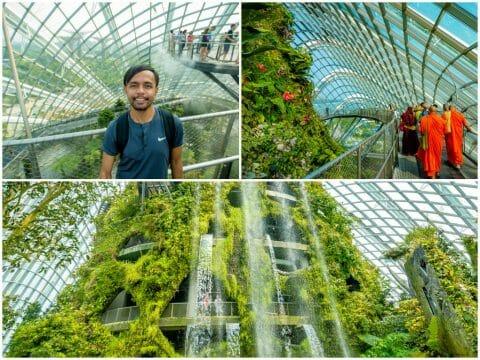 Gardens by the Bay & Singapore Botanic Gardens