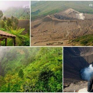 Mount Bromo 4-Day Highlights — Summit Crater Trek, Ngadas & Cemoro Lawang