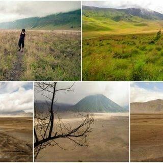 Bromo Savannah — Ngadas to Cemoro Lawang Hike