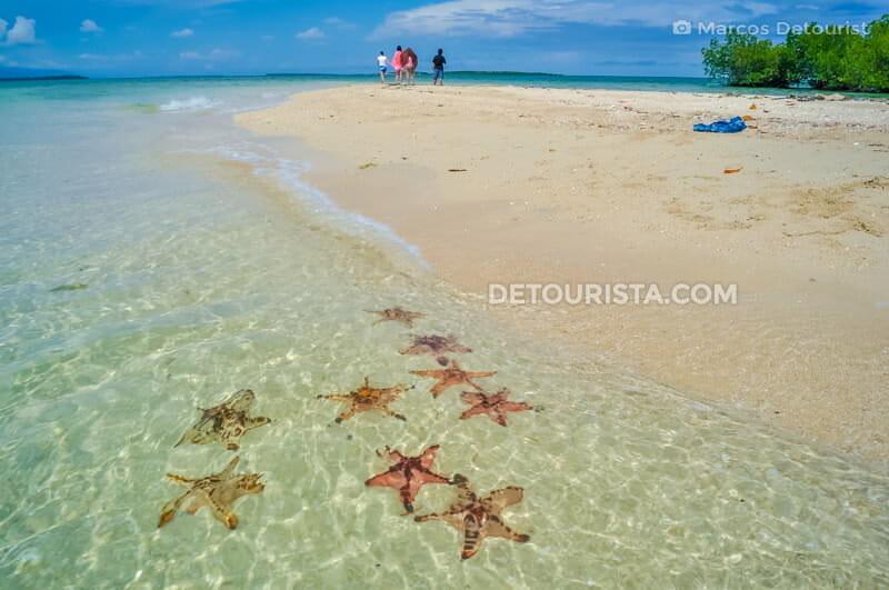 Starfish Island, Honda Bay