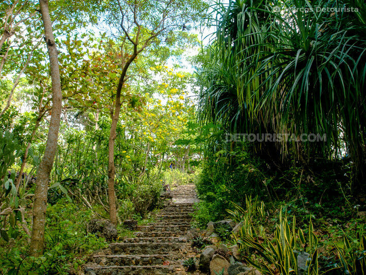 Uphill walkway to the Reception Cottage