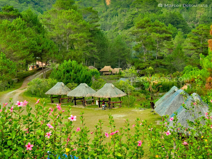 Banaue Ethnic Village and Pine Forest Resort, in Banaue, Ifugao,