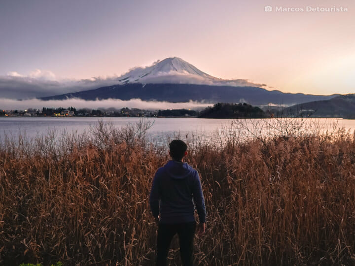 Marcos with Mount Fuji view, at Oishi Park, in Lake Kawaguchi, Y