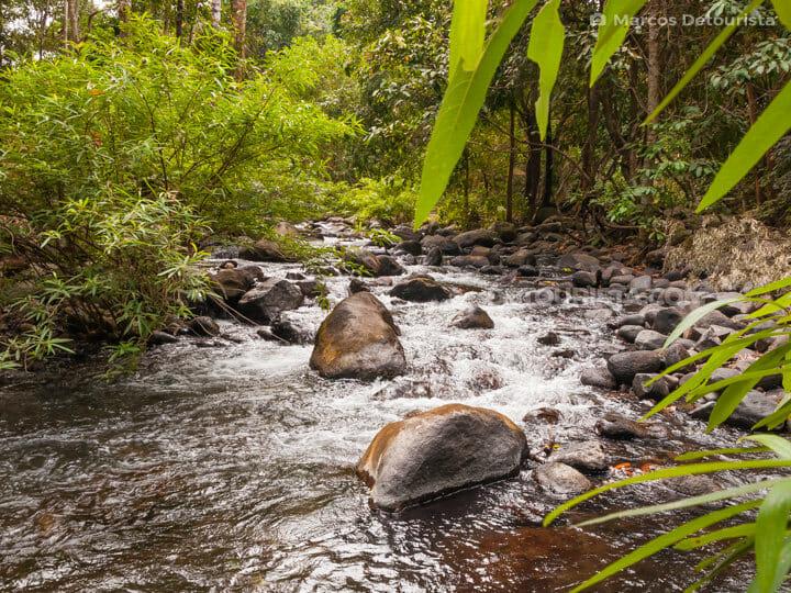 Pamulaklakin Trail, in Subic Bay, Zambales, Philippines