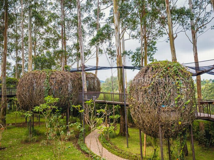 Bird's Nest Cottages, Dusun Bambu