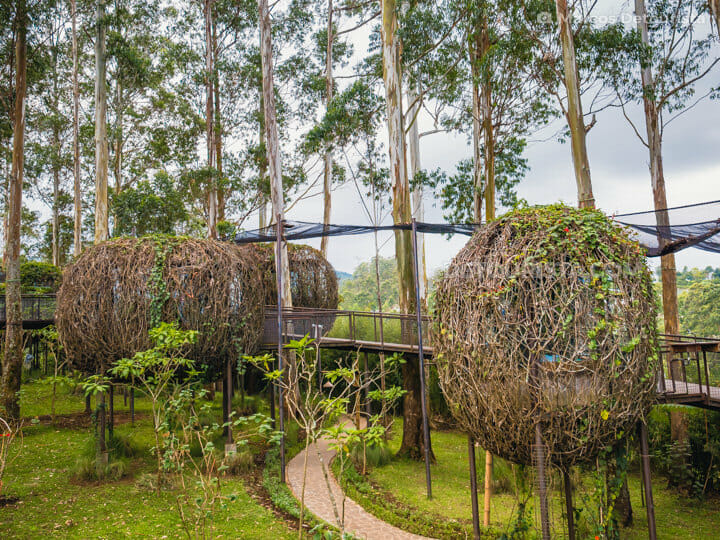 Bird's Nest Cottages, Dusun Bambu