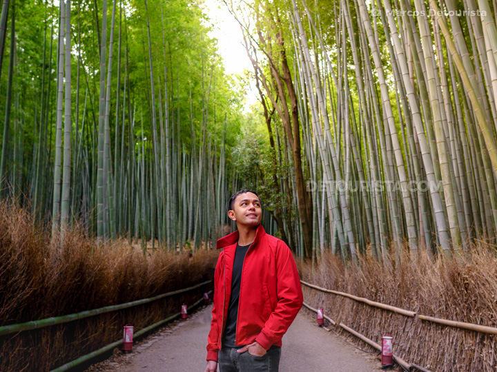 Bamboo Grove, in Arashiyama, Kyoto, Japan