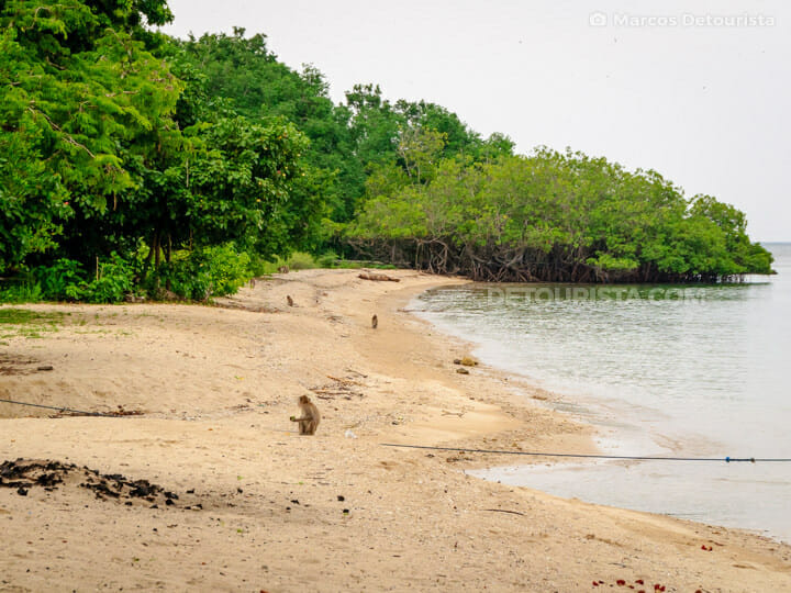 Bama Beach, Baluran National Park, East Java