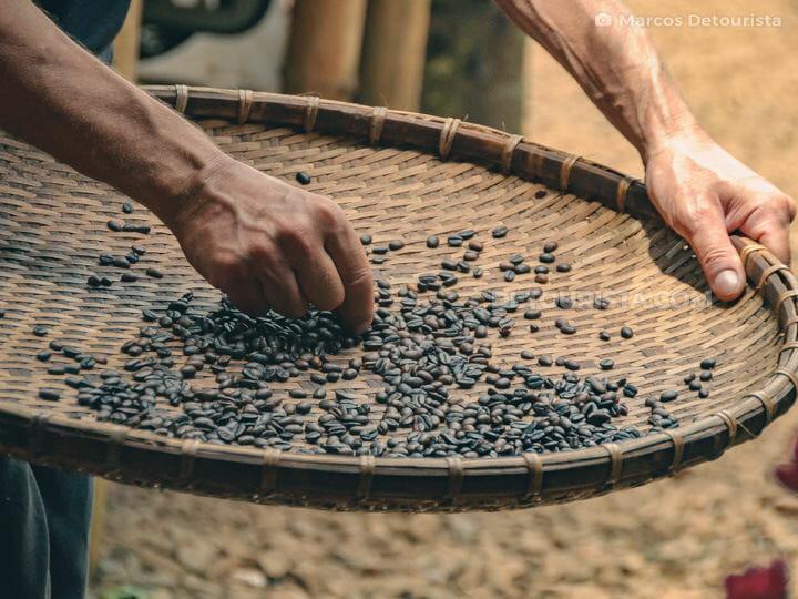 Paksong Coffee