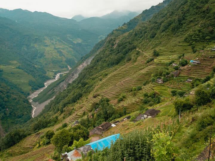 Annapurna Sanctuary trek farm terraces