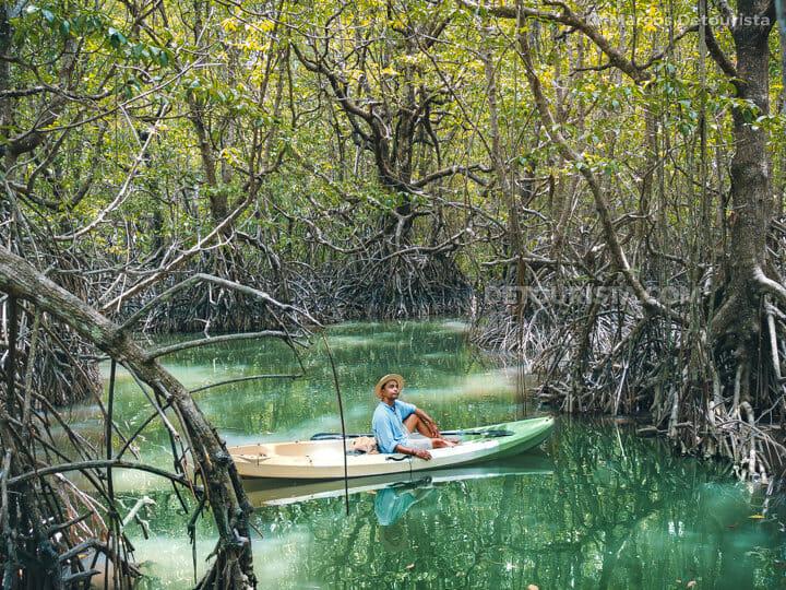 San Vicente Mangrove Forest, San Vicente, Palawan
