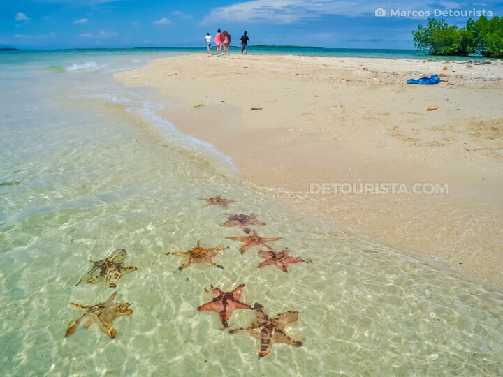 Starfish Island in Honda Bay, Puerto Princesa, Palawan, Philippi