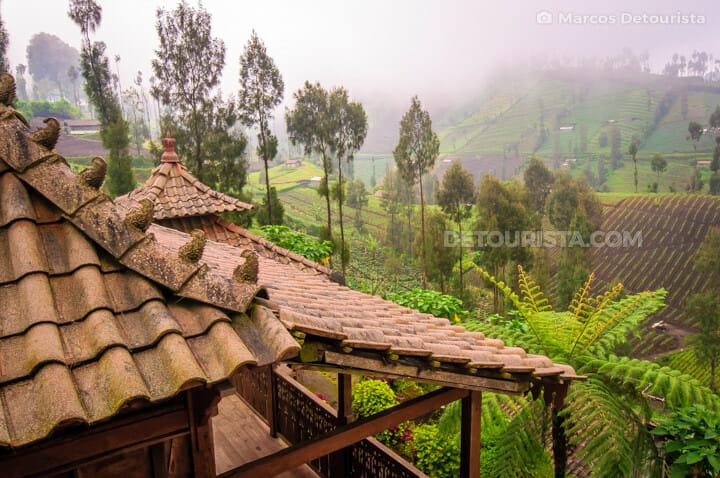 Homestay roof at Ngadas village, near Mount Bromo, in Bromo-Tengger-Semeru National Park, East Java, Indonesia