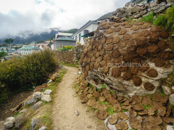 Sun-dried cow dung fuel at Khumjung