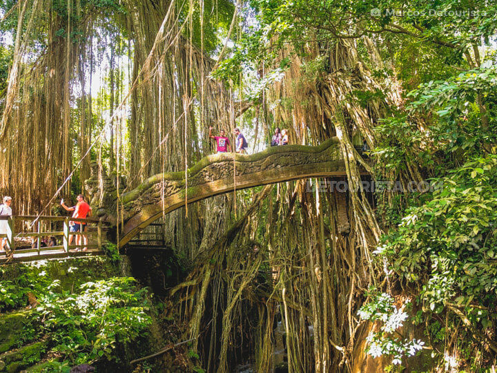 Ubud Monkey Forest, Ubud, Bali, Indonesia