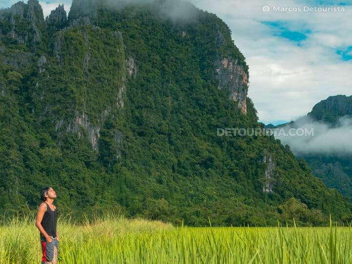 Vang Vieng karst mountains and rice fields
