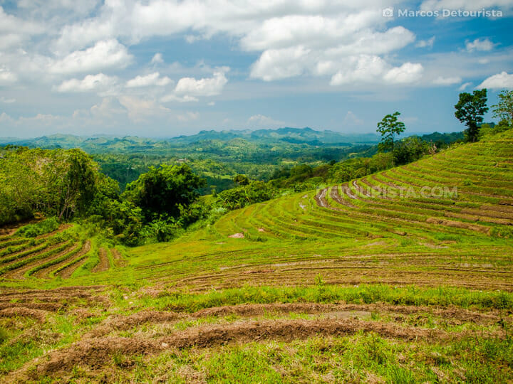 Cadapdapan Rice Terraces in Candijay, Bohol, Philippines