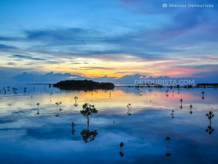 Olango Island Bird Sanctuary in Olango Island, Lapu-Lapu City, Philippines