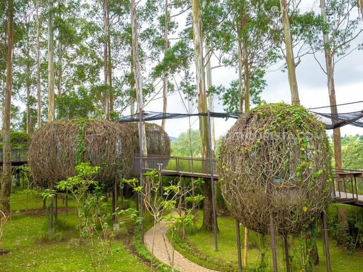 Bird's nest cottages