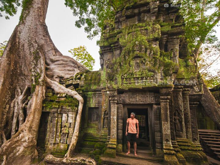 Ta Prohm Temple in Siem Reap, Cambodia