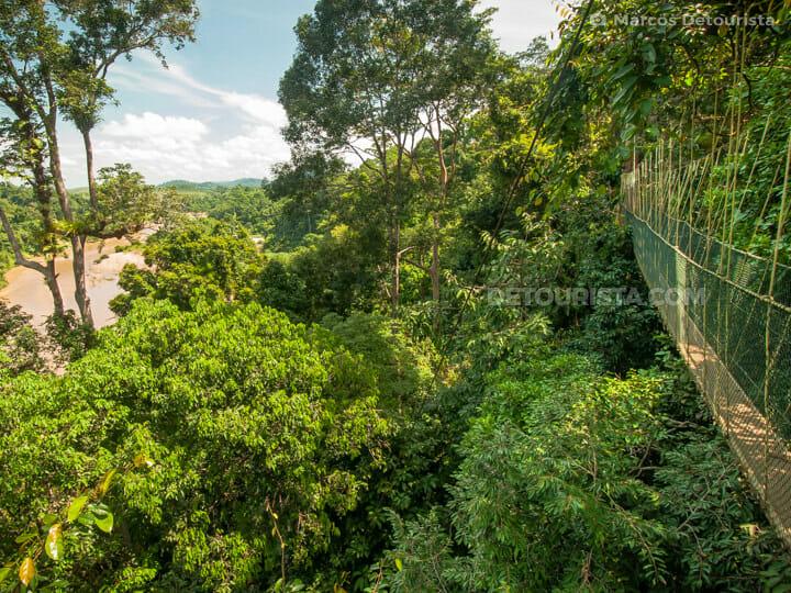 Pahang Taman Negara