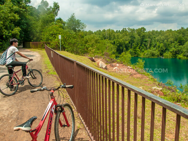 Pulau Ubin bicycle trail