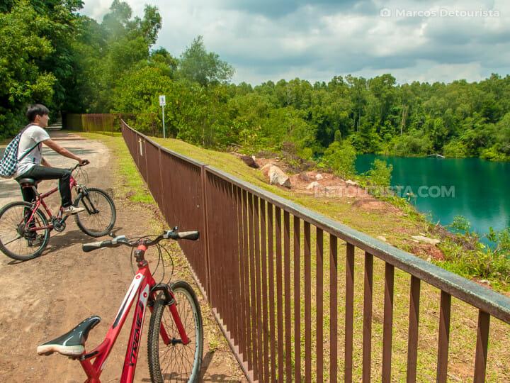 Pulau Ubin bicycle trail, in Singapore