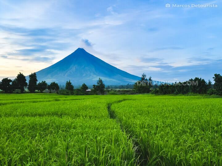 Mayon Volcano view near Cagsawa ruins, Albay