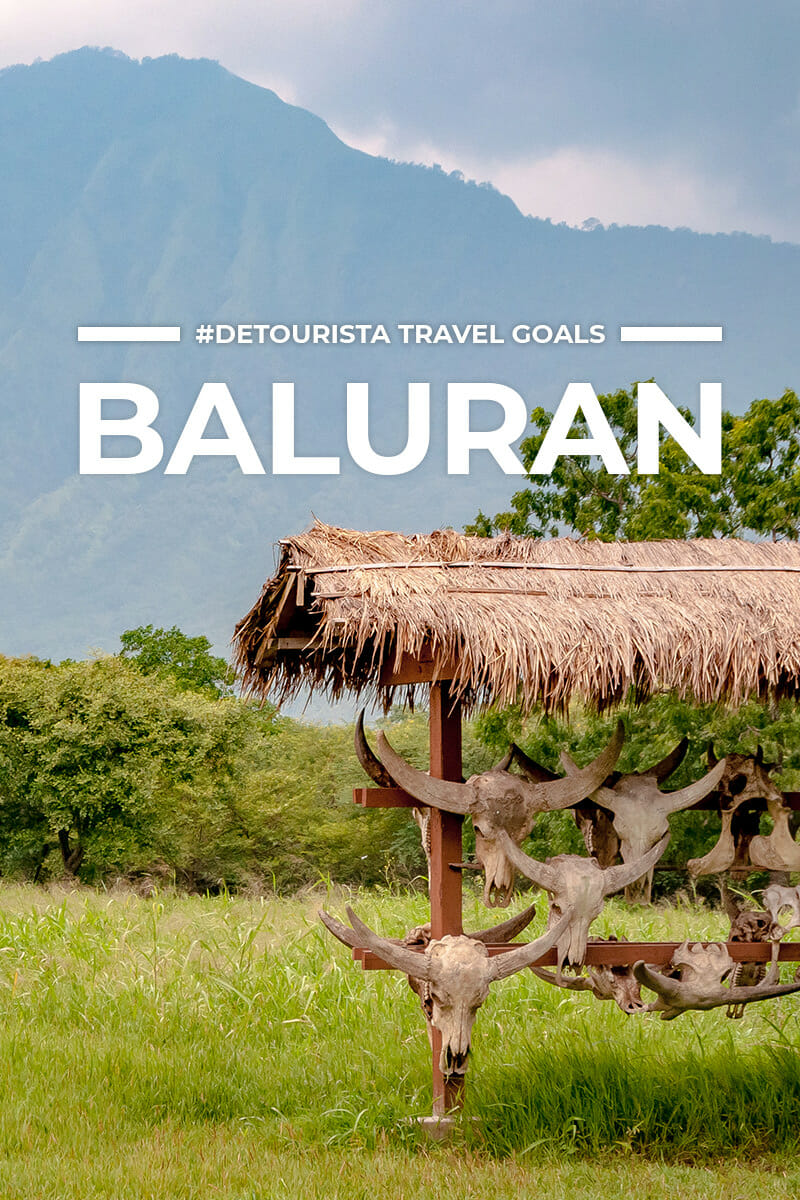 5 Places to Visit in Baluran + Things To Do