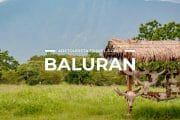 4 Places To Visit in Baluran