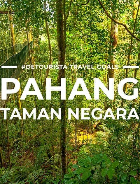6 Places to Visit in Pahang Taman Negara + Things To Do